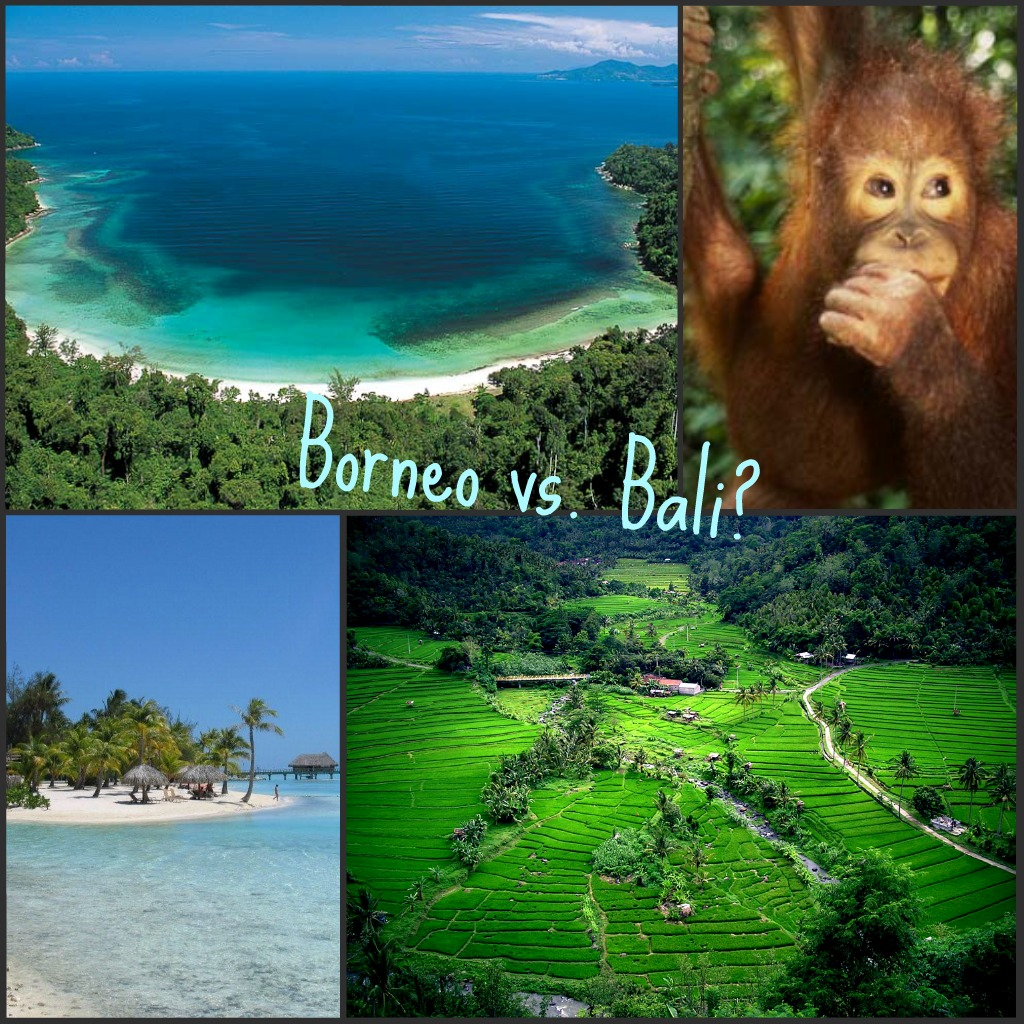Borneo_vs_Bali